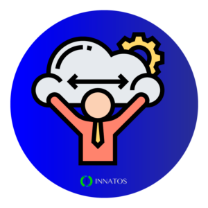 Innatos - Custom CRM or manufacturer CRM- Felixibility in storage